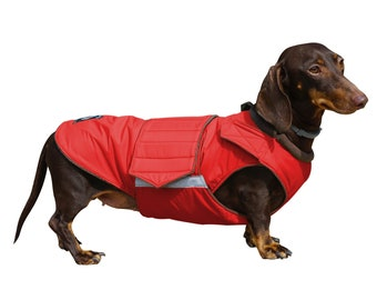 Pepper Pet Wear
