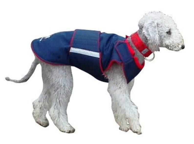 Winter Dog Coat  Dog Jacket  Custom made Dog Coat  image 0