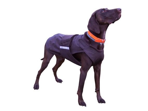 deutsche zeiger softshell hund mantel hund wintermantel etsy. Black Bedroom Furniture Sets. Home Design Ideas