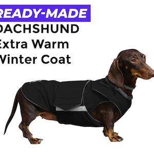 BOXER  Hund dog Winter FLEECE Handschuhe gloves