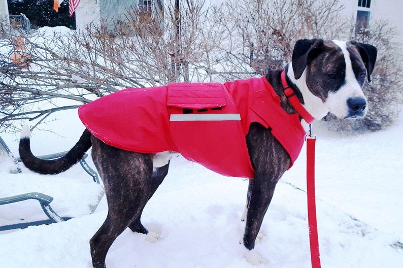 Winter Dog Jacket Custom Dog Raincoat Custom made MADE TO ORDER Dog Coat for Staffordshire Terriers Waterproof  Fleece Coat