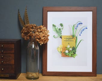 Limited Edition A3 Print - 'The Observer Book of British Wild Flowers' Artwork.