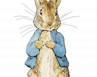 Peter rabbit   Etsy