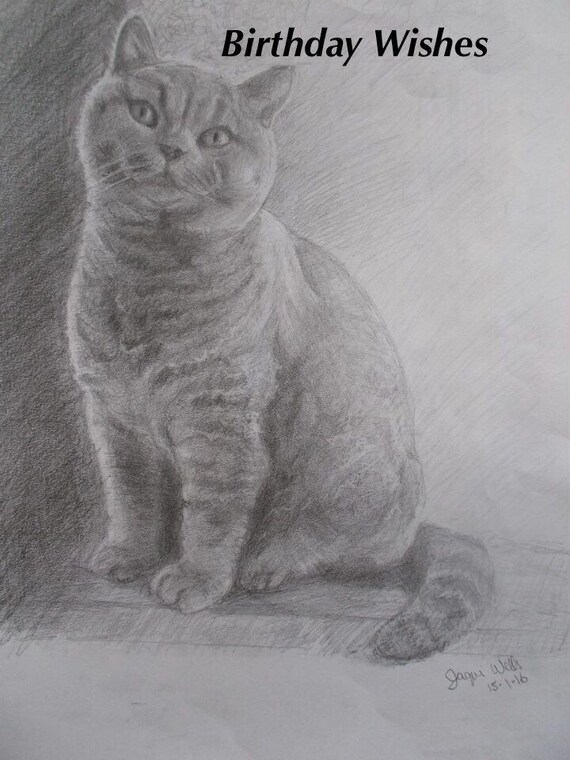 Birthday Greeting Card British Shorthair Cat 7x5