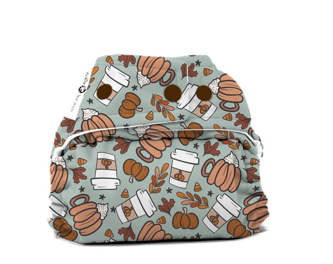 PRE-ORDER: Pumpkin Spice Cloth Diaper Cover or Pocket Diaper (One Size) Baby Shower Gift