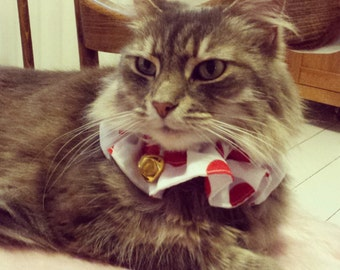 Bright coloured cat collar cover with loud bell warns birds and wildlife
