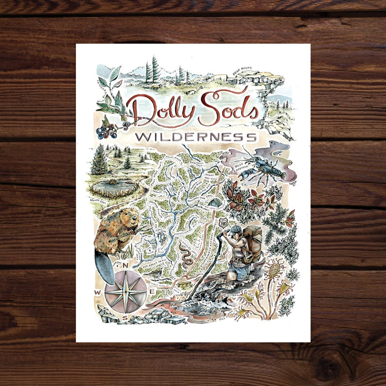 Dolly Sods Wilderness Watercolor Illustrated Map - Large, Limited Edition