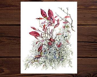Large Lichen & Leaves Watercolor Art Print