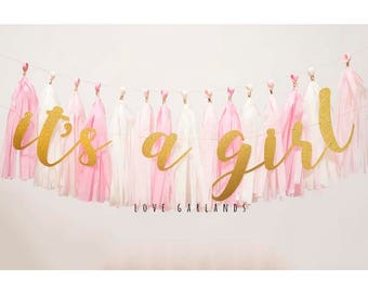its a girl banner etsy