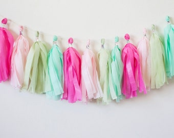Pink and Mint Tassel Garland (15)