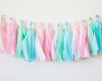Pink, Mint, Aqua Tassel Garland (15)