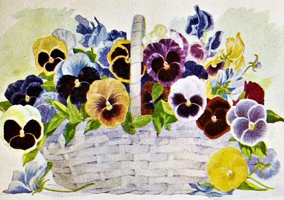 Fleur Vintage Pansy napperon WovenTextured ourlée de bords, robuste imperméable à l'eau, Flexible.