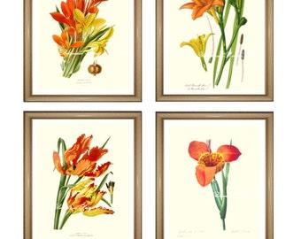 "Orange flowers print Set. Botanical Print Set. Any 4 ORANGE flower prints. Floral Wall Art Set. Orange Wall Art. 8x10""  11x14"""