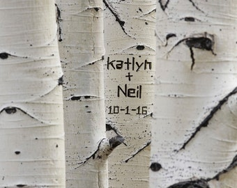 Carved Tree Trunk Photo Personalized Wedding Gift Aspen Trees White Black Customized Names Anniversary Valentines Day pp37