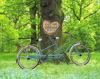 Personalized Wedding Gift - Tandem Bicycle Photo - Carved Heart on Tree - Unique Romantic Gift - Anniversary pp93