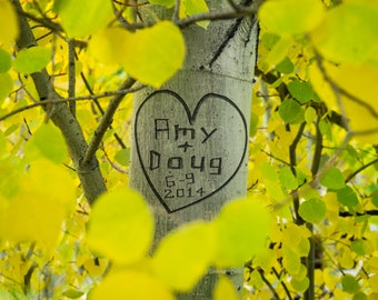 Carved Tree Trunk Personalized Wedding Gift White Aspen Trees Customized Names Photograph Anniversary Valentines Day pp52