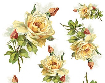 Yellow Roses Floral Flower Decoupage Rice Paper R1200-1 x A4 Sheet of decoupage Rice Paper
