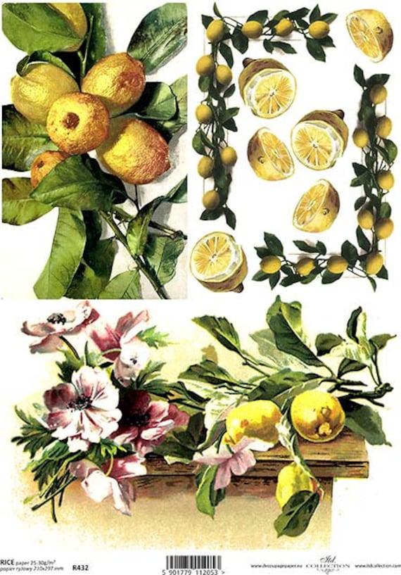 hoja Craft Vintage Papel De Arroz Para Decoupage álbumes de recortes collage de frutas