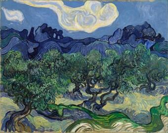 Vincent van Gogh: Olive Trees in a Mountainous Landscape. Fine Art Print/Poster (0017)