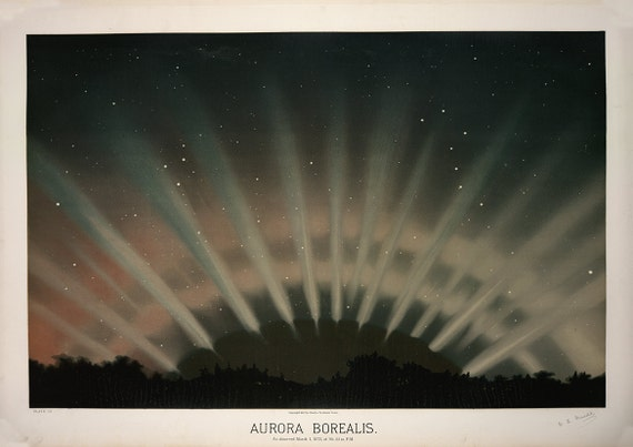 The November Meteors Etienne Leopold Trouvelot Fine Art Print//Poster