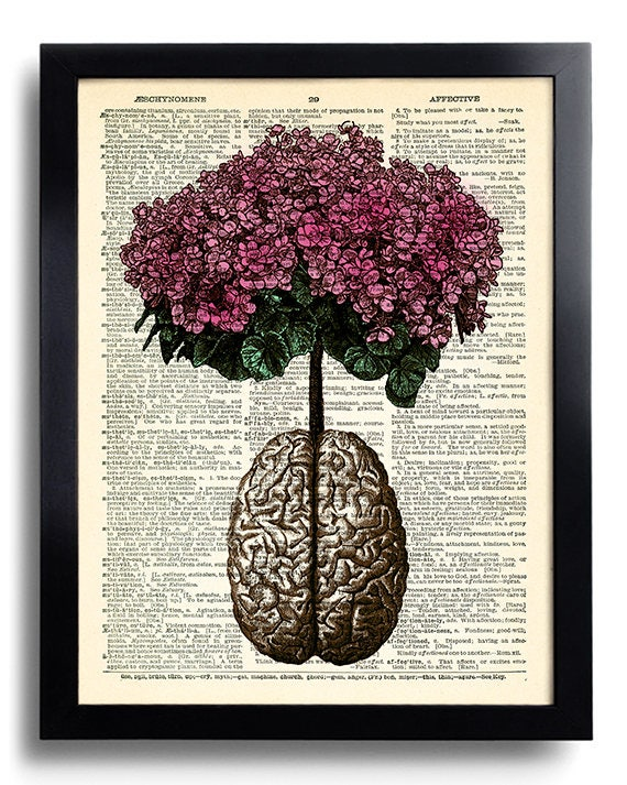 Brain Human Anatomy Flowers Dictionary Art Print Anatomical | Etsy