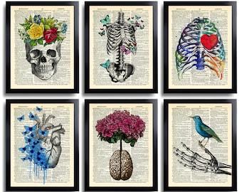 Anatomy Art Print Set 6 Medical Wall Art Anatomical Poster Home Decor Gifts Anatomical Gift Set of Posters Vintage Human Anatomy Skull 630