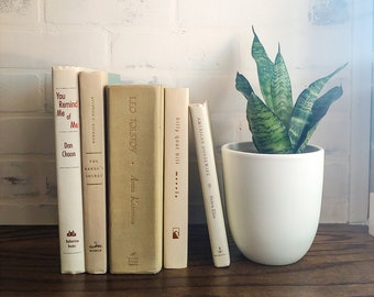 Ivory, Cream and Tan Decorative Books for Shelf Styling