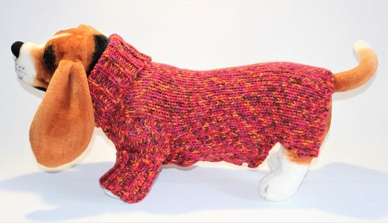 Dog SWEATER 17 Large Upcycled Autumnal Turtleneck image 0