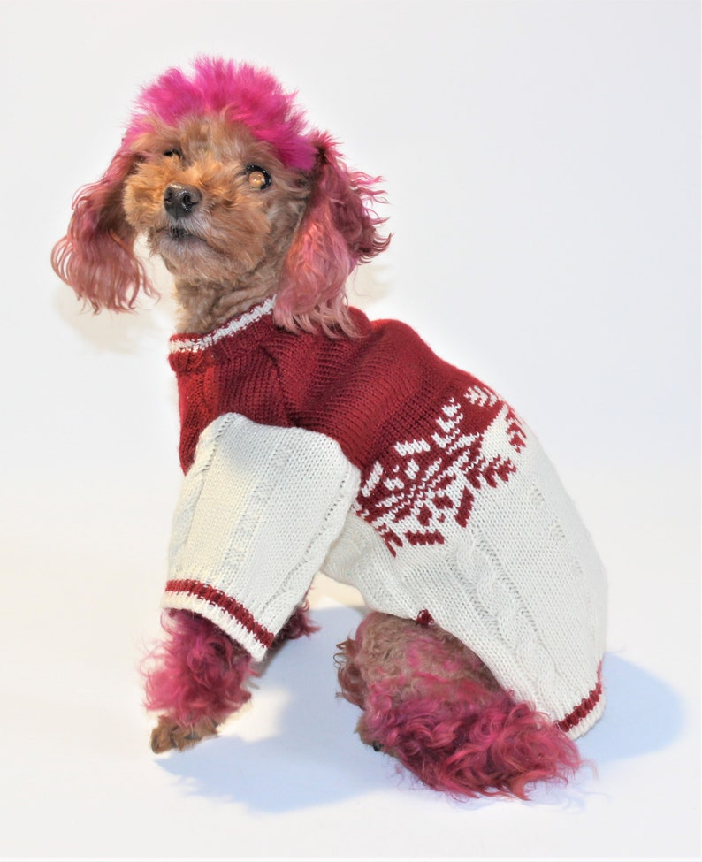 Dog SWEATER 10 Teacup XS Upcycled Dark Red Cream Winter image 0