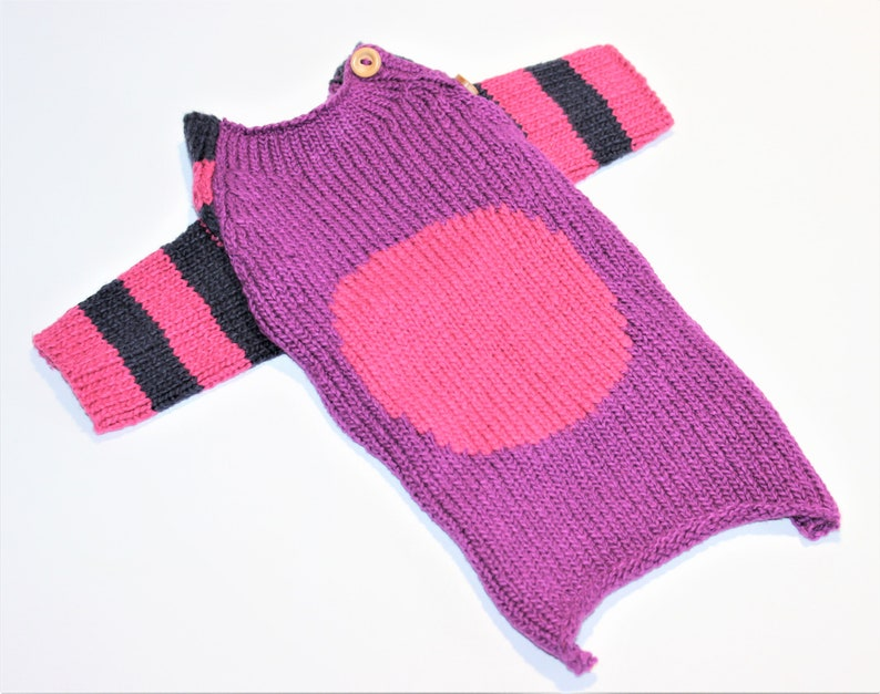 Dog SWEATER 11 XS Small Upcycled Button Neck Sweater image 0