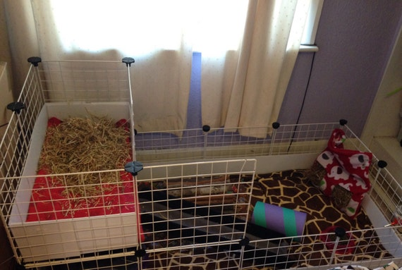 Custom Made To Order 4x2 With 1x2 Loft C C Cage Liners Guinea Etsy