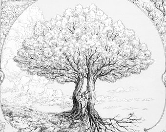 Fine art print limited edition : The Tree Inbetween