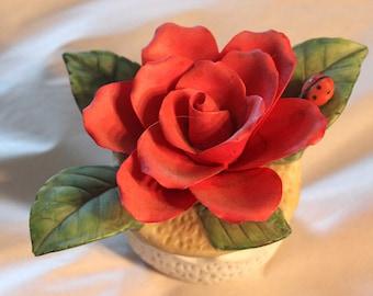 Rose glass box