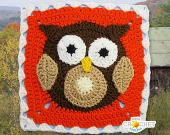 Owl Blanket Square Crochet PATTERN PDF - 11.5 inch Square -  November Calendar Blanket Motif - Autumn, Fall, Thanksgiving - Jayda InStitches
