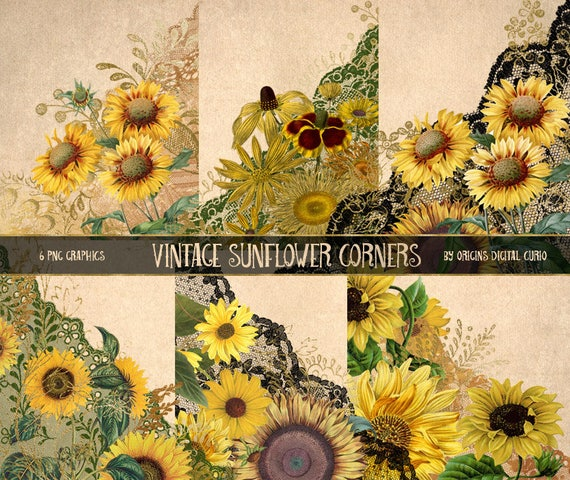 Vintage Sunflower Corners Clipart vintage flower and lace ...