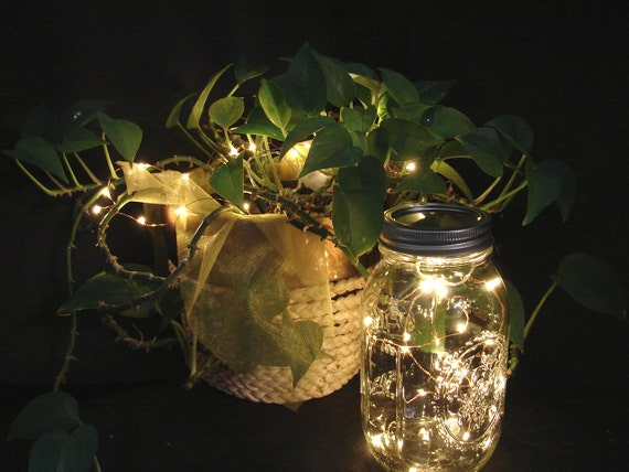 best cheap 59bd0 43696 VALUE PACK Fairy Lights for mason jars or crafts with REPLACEABLE  batteries. You pick quantity. 20 LEDs / wire, warm white lights. (CRFW20)