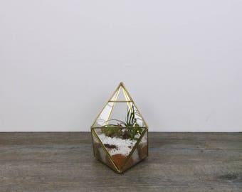 Terrarium - Diamond Terrarium-Succulents - House plants -Living room decor -Succulent terrarium -Home decor-Air plants-Glass terrarium