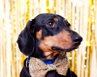 Gold Dog/Cat Glitter Party Bow Tie