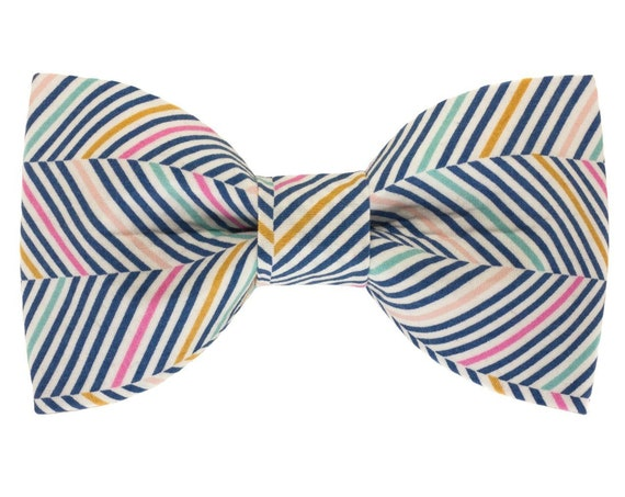 Spring Summer Chevrons Dog Bowtie