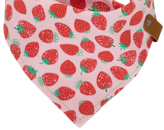 Summer Berry Dog Bandana