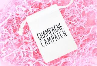 Champagne Campaign Favor Bag - Hangover Kit Bachelorette Party Favor - Bachelorette Party - Muslin Bag - Champagne Campaign Hangover Kit
