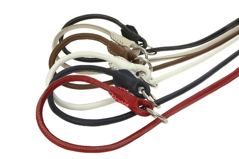 Rolled Round Floater Leather Dog Slip Lead Leash Black Pink Orange Green Colors 4 Feet Size S M L XL Soft Durable Dog Show New Design 2016