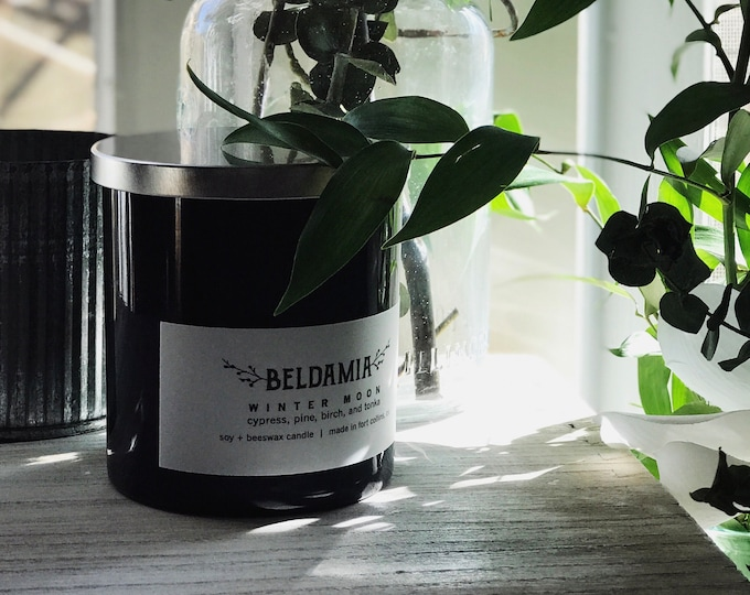 Winter Moon Soy Candle