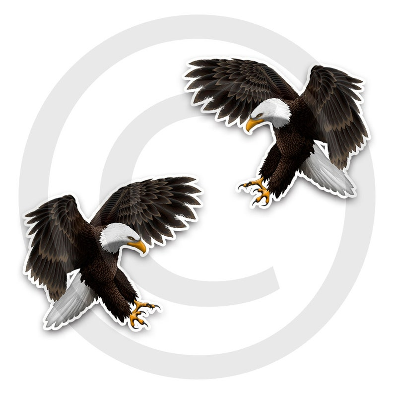 Vinyl Graphic set of 2 Attack position American Eagle Wall Decals Extra large decals. RV Decals
