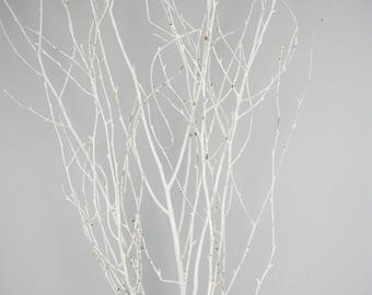 WHITE PAINTED BRANCHES/Curly Twigs/Branches/Centerpiece decor/ Decoration Branches/Gold Branches/White Birch Branches