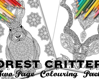 Forest Critters Two-Page Digital Colouring Pack