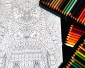 Owl 2 Detailed Colouring ...