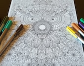 Owl Mandala Detailed Colo...