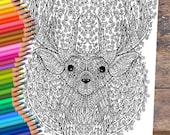 Floral Deer Colouring Pag...