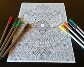 Owl Mandala Detailed Colo...